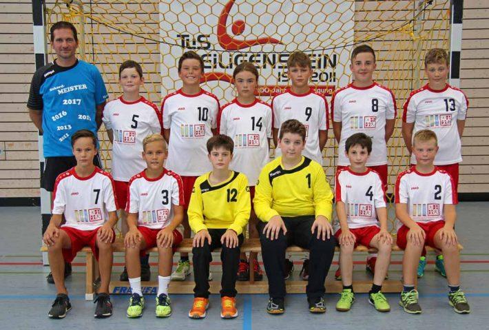 Männliche D-Jugend gewinnt Heimspiel gegen Dudenhofen/Schifferstadt 2